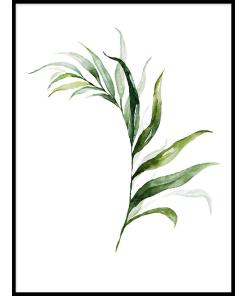 PLAKATY BOTANICZNE z liśćmi zielone liście plakat