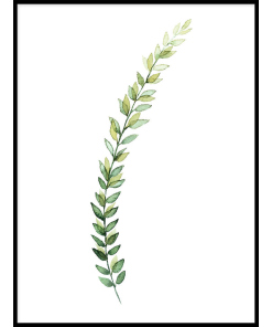PLAKATY BOTANICZNE z liśćmi zielone liście do kuchni
