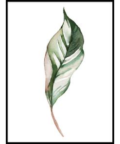 PLAKATY BOTANICZNE z liśćmi zielone liście do mieszkania