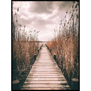 plakat kładka krajobrazy trzcina jezioro