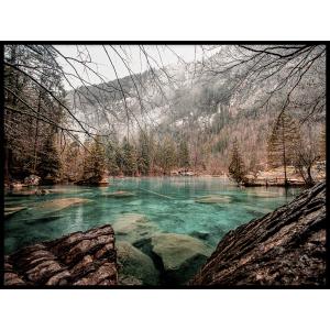 jezioro w lesie plakat sklep