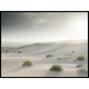 plakat pustynia piasek
