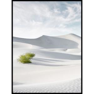 wydma piasek krajobraz plakat