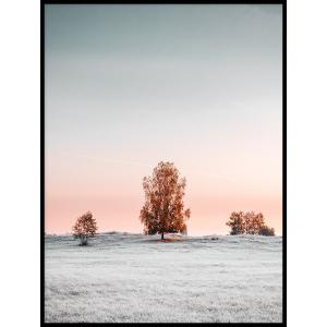 krajobraz drzewo plakat