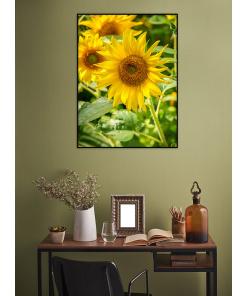 słonecznik plakat do domu na ścianę