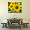słoneczniki plakaty na ścianę