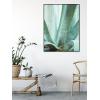 agawa plakaty z liśćmi agawy do mieszkania