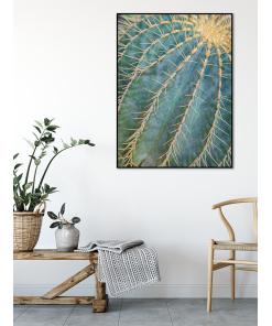 Zaprojektowanie ściany z obrazami z motywem kaktusa – to element, który nie wychodzi z mody.